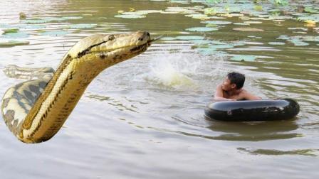 农村小伙湖边冬泳, 突然芦苇荡里杀出一条大蟒蛇, 这下惨了!