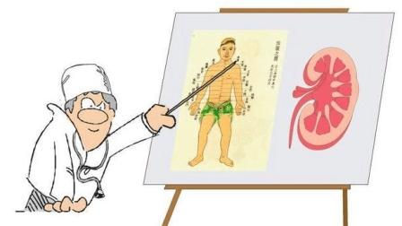 """化验单上尿蛋白都出现出现2个""""+"""", 医生却说没事, 什么情况? (1)"""