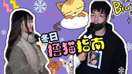 街访Show: 只有冬天才知道有养猫的好处~撸猫指南成片#冬日吸猫#67