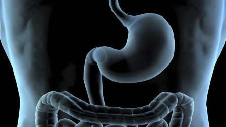 胃癌发现就是晚期! 下列3个症状, 都是身体发出的胃癌警报