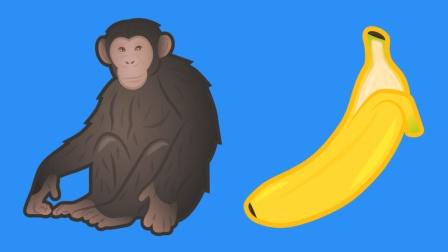 人类的DNA和香蕉的有50%相似? 难怪猩猩喜欢吃香蕉