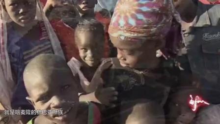 非洲原始部落, 用生命在捕蛇, 只为填饱肚子!