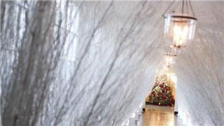 白宫圣诞装饰曝光53棵圣诞树超过1.2万个挂饰