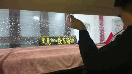 汽车贴膜后风挡贴玻璃膜精细讲解教学视频 黑克膜业出品