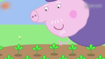 动画: 大家在猪爷爷的院子里纷纷找到了巧克力彩蛋