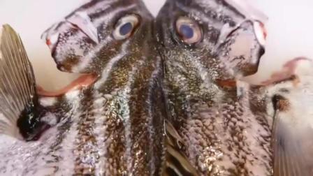 日本街头美食: 品尝烤厚唇石鲈鱼和海鲜披萨