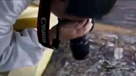 考古专家清理西汉刘贺棺椁, 拍摄时吓一跳, 感觉像被咬一口