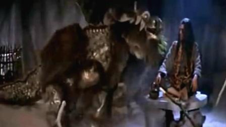 小伙被人打落悬崖没想到被一个神兽救了 然后练成了绝世神功