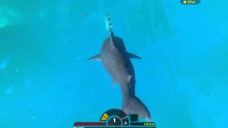 暗墨解说 海底大猎杀 暗墨用大白鲨就是厉害