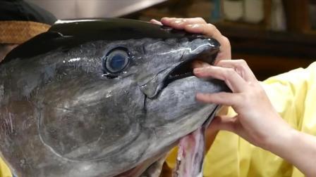 宰杀40公斤的金枪鱼, 做成日本料理生鱼片, 全都吃掉, 包括眼球