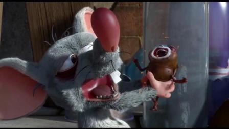 爆笑虫子: 老鼠饿极乱抓虫, 没吃到虫只能吃虫的剩饭