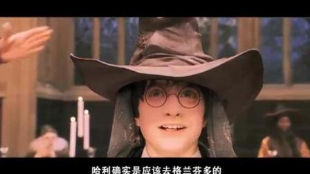 【哈利波特】假如哈利进入斯莱特林, 那么故事可能是这样的