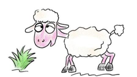 一只吃草的卡通绵羊亲子简笔画教程 宝宝轻松学画画