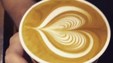 【每日咖啡拉花】拿铁艺术-滑翔的牛奶-卡布奇诺(ins@zh_edls)