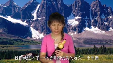 葫芦丝小苹果葫芦丝教程13最好听的葫芦丝独奏曲