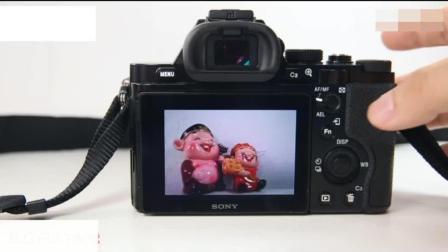 佳能单反相机入门教程 佳能单反摄影教程 canon eos 700d数码单反摄影技巧大全