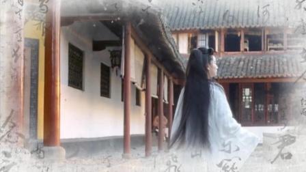 天龙八部之天山童姥: 经典古装美女林青霞 -曾经沧海难为水除却巫山不是云