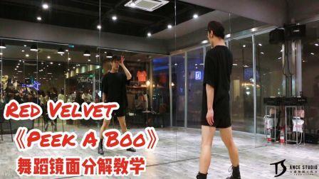 Red Velvet《Peek-A-Boo》舞蹈镜面分解教学【TS DANCE】