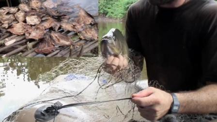 德哥向导厉害啊, 在河里捕到好多水虎鱼, 做烤鱼干!
