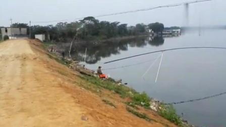 农村大湖巨物钓鱼32米长竿150元1天 这种收获很意外