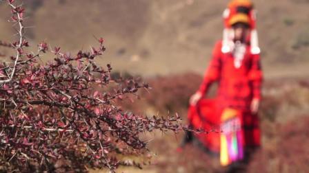 彝人视角彝族女儿离别亲人成新娘的那刻太煽情了