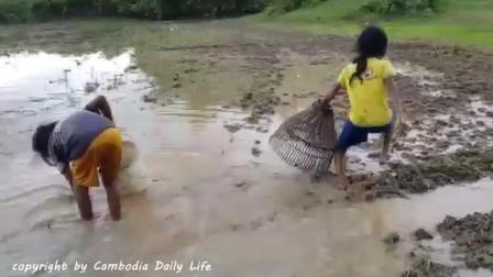 2个农村小女孩在田里捡田螺, 突然一条可怕的家伙窜了出来!