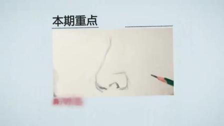 1美芬素描画画图片素描_少儿素描入门静物素描教程