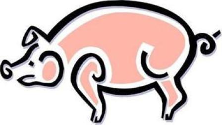 神奇的动物世界-贪吃的糕点师猪大厨简笔画