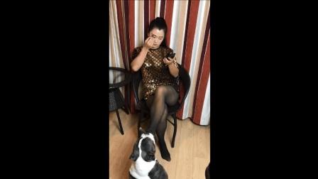 正在化妆的黑丝袜美少妇, 你的脚是有多臭才会吸引狗狗
