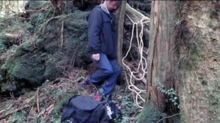 人们专程赶来这座森林里自杀! 如今每年找到尸体78具!