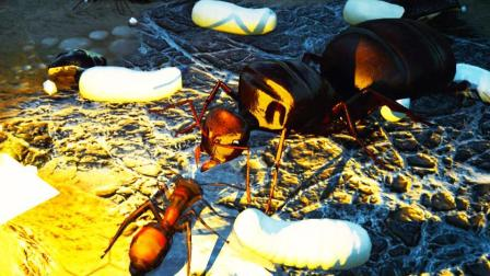 【小熙解说】模拟地下蚁国 带领蚂蚁军团毒虫蚂蚁帝国诞生!