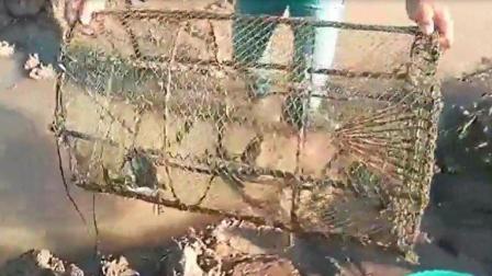 农村青年江边捕鱼, 一个超大的铁笼往里一放, 第2天拎上来吓懵了