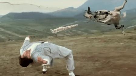 2002年的美国喜剧电影, 嘲讽当时国内的武打片, 这次我站这部电影