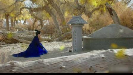 将军在上大结局: 这一点和小说不一样, 叶昭表妹的墓不是叶柳氏!