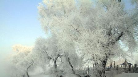 吉林市雾凇