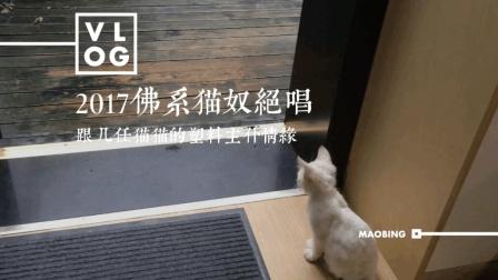 #冬日系猫#佛系猫奴绝唱: 跟几任猫猫的塑料情缘