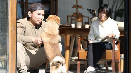 不想上班, 小夫妻每年4万租600㎡房子, 在北京郊区过上了佛系生活