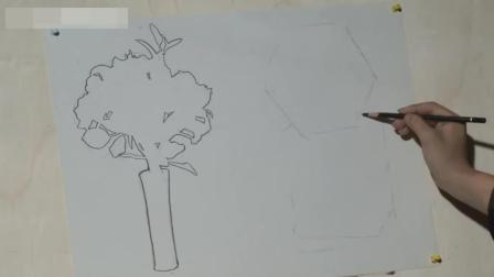 素描培训班多少钱素描入门图解_国画入门教程_高考美术分数线素描基础
