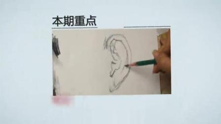 静物素描教程基础油画_油画教程_色彩画入门丙烯画技法