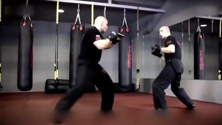 世界格斗教练, 教你近身格斗绝技, 快速制服对手!
