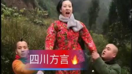 刘二狗团队搞笑视频, 笑死人不偿命!