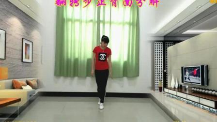 云南省红河哈尼族彝族自治州红河县身体胖的人学什么舞 广场舞曳步舞教学