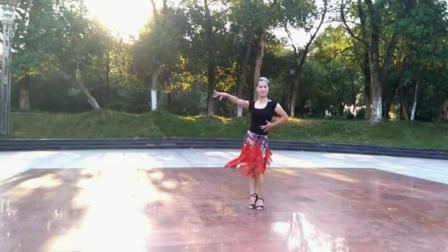 十六步对跳广场舞 广场舞欢乐的跳吧 广场舞红马安分解动作