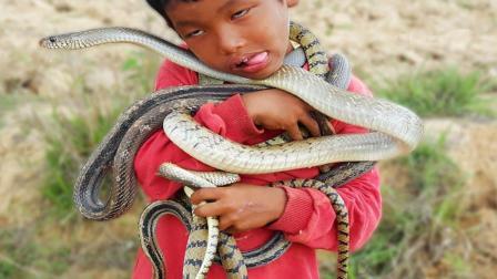 姐姐带弟弟田边挖蛇, 姐姐是捕蛇高手, 一下午弟弟的脖子都挂满了