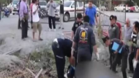 重庆领队为救游客在泰国被大象踩死