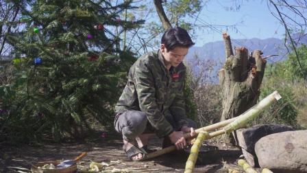 广东小伙圣诞节用甘蔗制糖, 做的甘蔗冰糖葫芦, 可以上市了!