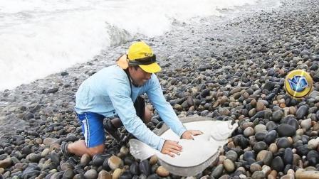 50岁老汉海边钓鱼, 大鱼咬钩后, 现场火了