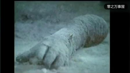 奥特曼: 奥特曼诈尸了, 被怪兽分尸后还能复活!