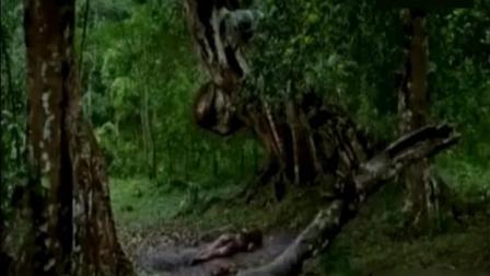 一部印度电影, 蛇进化成美女全过程, 印度当年票房冠军!