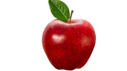 素描手绘教学, 圣诞节没收到礼物, 给自己画一个苹果吧